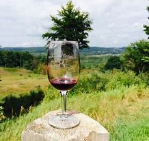 Wine glass shot with background views